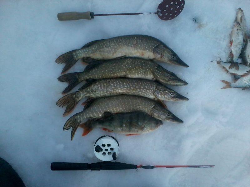 Рыбалка на камском водохранилище